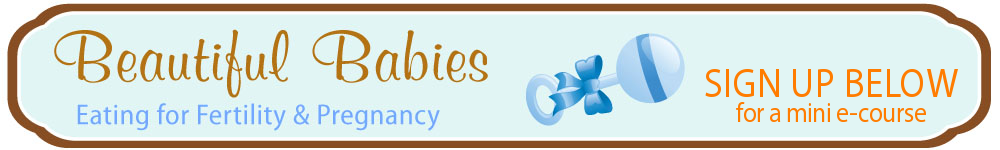Beautiful Babies: nutrition for fertility, pregnancy, breastfeeding, & baby's first foods