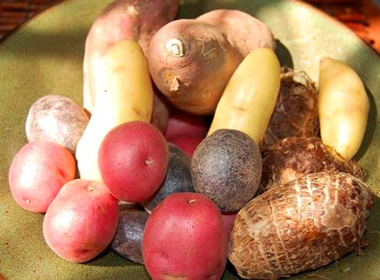 For The Love Of Tubers | Food Renegade