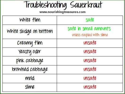 troubleshooting-sauekraut