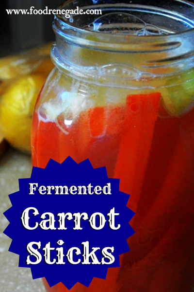 lacto-fermented-carrot-sticks-2