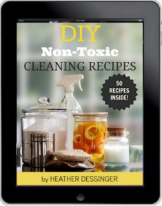 Cleaning-Book1-1