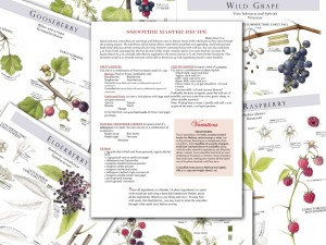 foraging-feasting-master-recipes