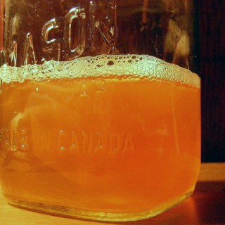 kombucha questions and answers part 2
